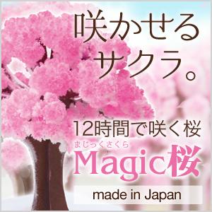 マジック桜の原理とは?