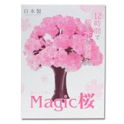 マジック桜の販売元は東急ハンズ?